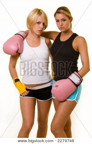 Zwei Sexy Boxer