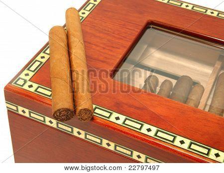 Two Cigars On A Humidor Box