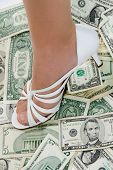 Money Shoe