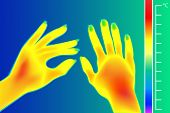 Thermal Imager Human Hands Vector Illustration. The Image Of A Female Arms Using Infrared Thermograp poster
