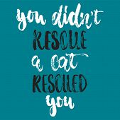 You Didnt Rescue A Cat Rescued You- Hand Drawn Lettering Phrase For Animal Lovers On The Dark Blue  poster