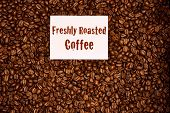 Overhead Image Of Freshly Roasted Coffee Beans With A Freshly Roasted Coffee Sign On Top Of The Bean poster