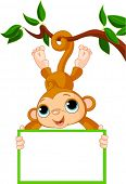 picture of baby-monkey  - Cute baby monkey on a tree holding blank sign - JPG