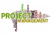 Project management concept in woord tag cloud