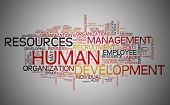 picture of human resource management  - Human resources development concept in word tag cloud - JPG