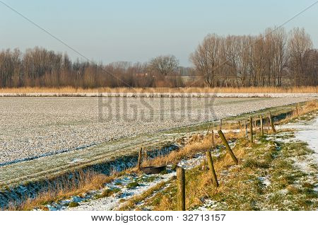 Dutch Rural Landscape In Winter