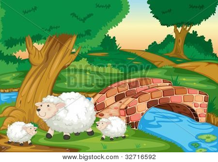 Illustration of sheep in field