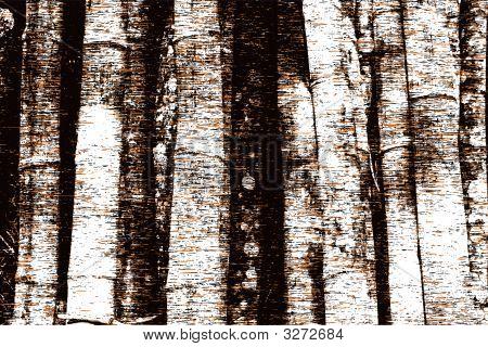 Tree Trunk Grunge