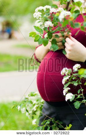 Anonymous Pregnant Woman