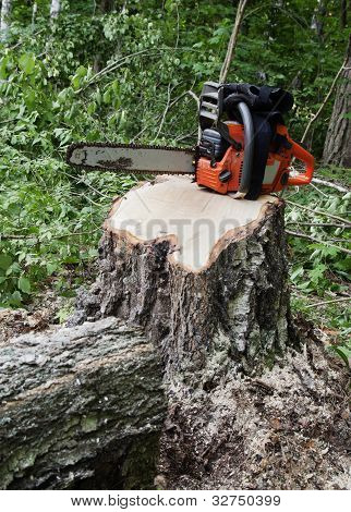 Chainsaw On A Stump