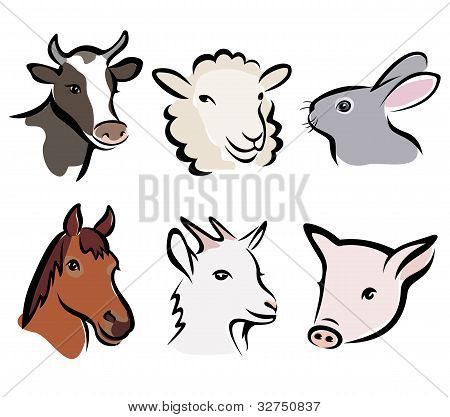 Farm Animal Set Of Symbols