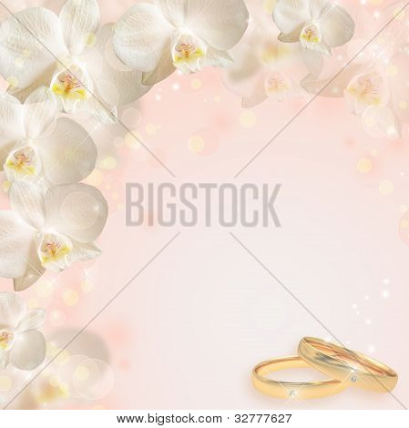 Wedding Background With The  Orchid