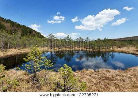 The Mohos Peat Bog