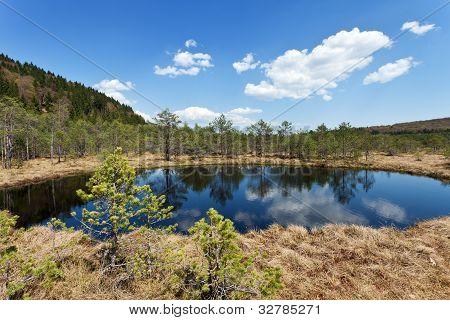 The Mohos Peat Bog