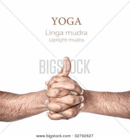 Yoga Linga Mudra