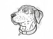 Retro Cartoon Style Drawing Of Head Of A Catahoula Leopoard, A Domestic Dog Or Canine Breed On Isola poster