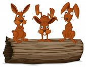 pic of hollow log  - Illustraiton of rabbits on a log - JPG
