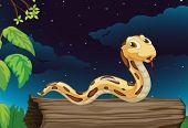 image of hollow log  - Illustraiton of snake on a log at night - JPG