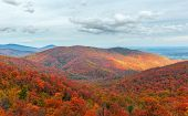 Colorful Autumn View Of Blue Ridge Mountain Ridges From Skyline Drive In Shenandoah National Park. V poster