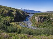 Icelandic Landscape With Blue Markarfljot River Canyon, Pink Flowers, Birch Bush, Green Hills And Ey poster