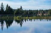 Tranquil Lake With Trees Reflected Symmetrically In The Clean Blue Water, Serene Landscape, Solitude poster