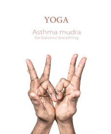 stock photo of samadhi  - Hands in asthma mudra by Indian man isolated at white background - JPG