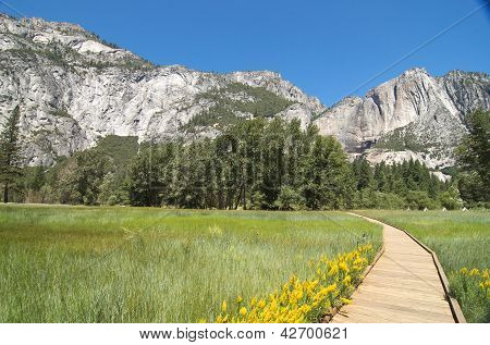 Horizontal walkway through meadow in Yosemite