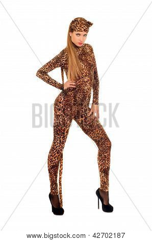 Woman Dressed As A Leopard