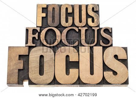 focus word abstract - isolated text in vintage letterpress wood type printing blocks, a variety of fonts