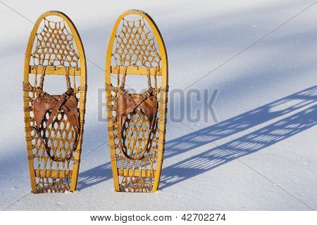 a pair of classic Bear Paw wooden snowshoes cast shadow in snow