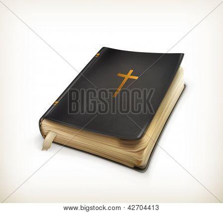 Bible, vector