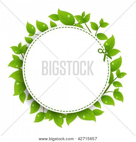 Announcement Coupon With Green Leaves, Isolated On White Background