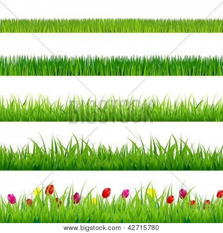 Big Green Grass And Flowers Set, Isolated On Red Background