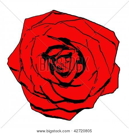Vector single red rose flower isolated on white background