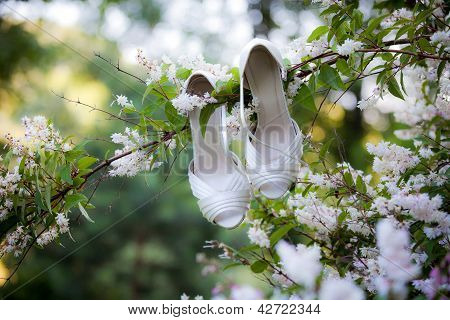 Bride's Shoes On A Log On Rustic Car