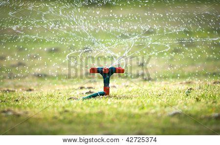 Garden watering system with spiral sprays.