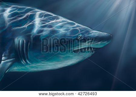 A white shark swimming along underwater illustration, digital tablet