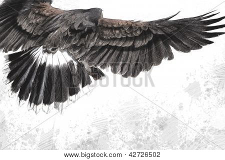 low-flying eagle illustration over artistic background, made with digital tablet