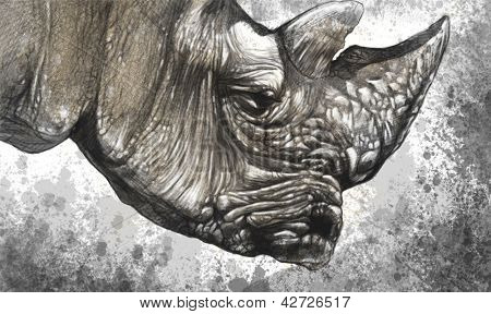 White rhino (Ceratotherium simum) illustration made with digital tablet