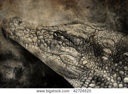 Illustration made with digital tablet, crocodile