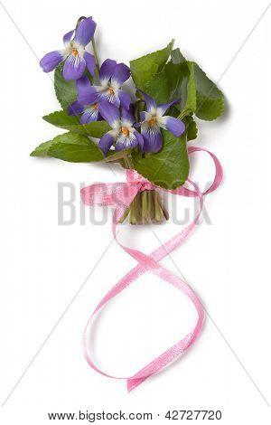 Bouquet of violets with a ribbon in the form of the eight