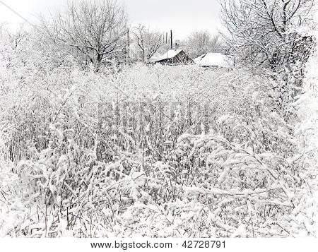 Village In Winter. Snow Landscape.