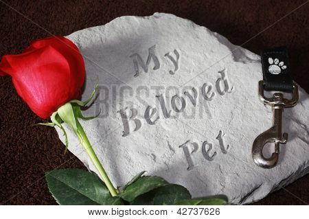 Loss of a Pet