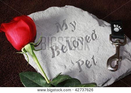 Loss of a Pet