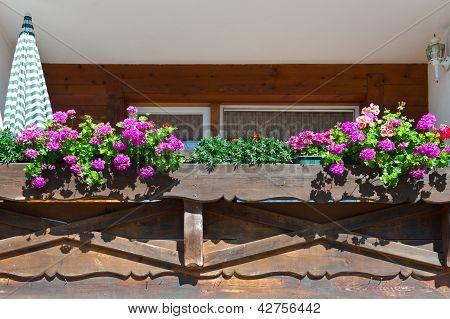 Wooden Loft