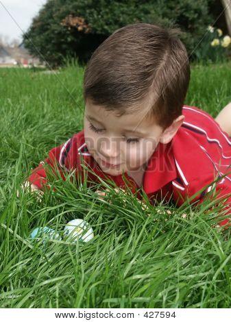Boy Eggs 9