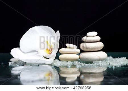 Spa stones with orchid flower