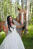 foto of birchwood  - young woman in the dress of fiancee next to a horse by a canicular day in a birchwood - JPG