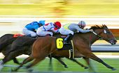 Abstract Motion Blur Horse Race