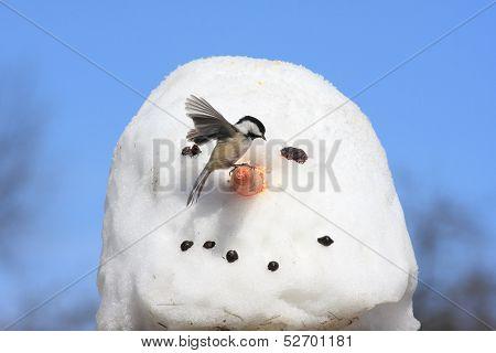 Bird On A Snowman